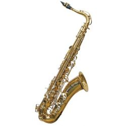 j.michael tn900 saxo tenor