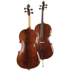 hofner-alfred as-185-c cello