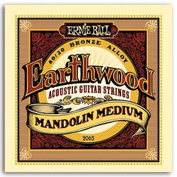 Ernie Ball SET MANDOLINA EARTHWOOD MEDIUM 10-36