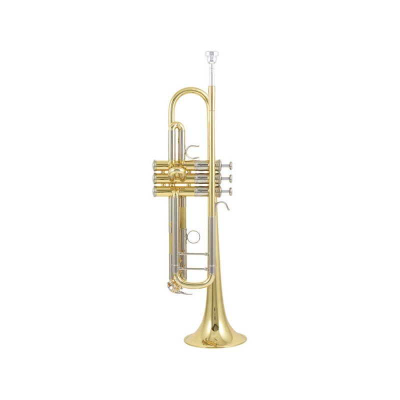 Compra YAMAHA YTR-8345RG SP 04 Trompeta Custom al mejor precio