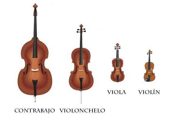 Instrumentos de cuerda frotada, Violín, Violonchelo, Viola, Contrabajo,